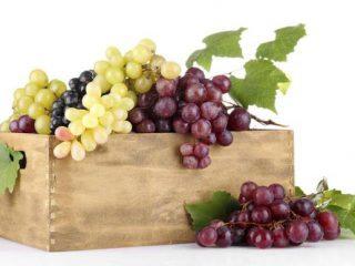 Beauty benefits of grapes. My recipes for homemade cosmetics from grapes